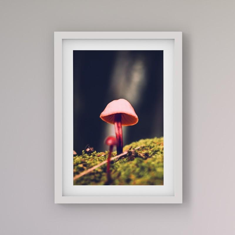 3 Çerçeveli Tablo Seti - Doğa Portreleri